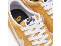nike-sb-zoom-all-court-ck-cory-small-2