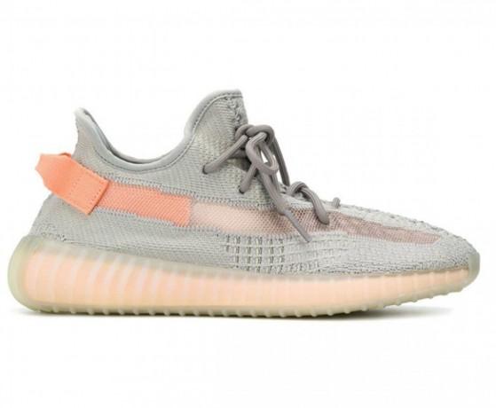 adidas-yeezy-boost-350-v2-true-form-big-0